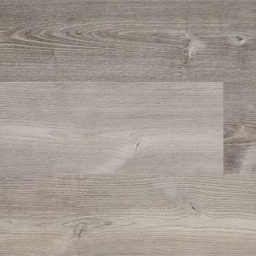 Sinapia Oak